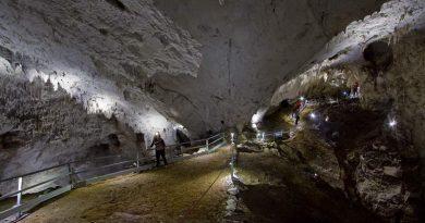 Curs de formare profesională Ghid turistic pentru peșteri amenajate,