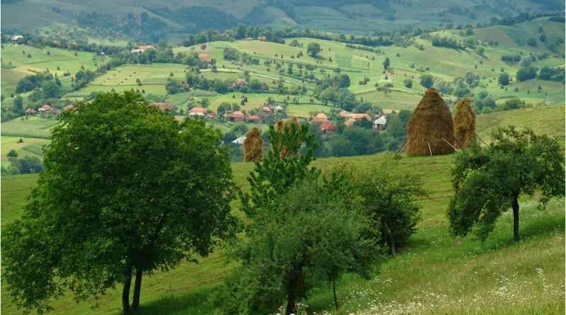 """Achiziție Studiu cantitativ și calitativ privind monitorizarea turiștilor în cadrul proiectului """"Nature preservation, protection and promotion on both sides of the Romainian-Hungarian border"""", cod proiect ROHU-126"""